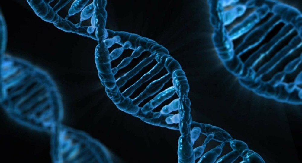 वैज्ञानिकों ने दी चेतावनी : इस तरह के काम करने से आपके डीएनए को हो सकता है नुकसान 3
