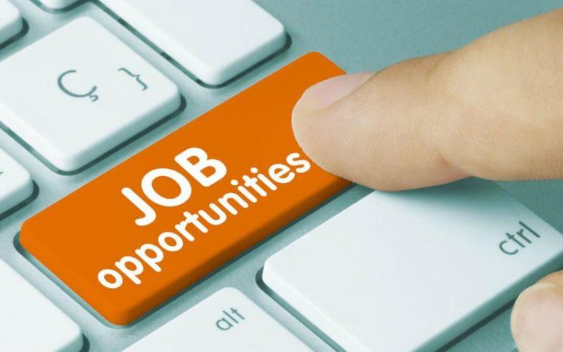 IBPS RRB- बैंक में निकली हजारों नौकरियां, जानिए आवेदन की पूरी प्रक्रिया 4