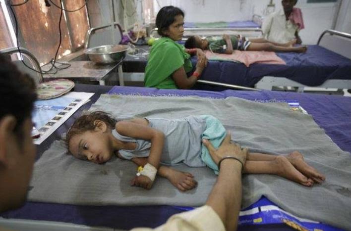 Image result for लीची से होने वाली बीमारी इंसेफलाइटिस की वजह से बिहार में अब तक 19 बच्चों की मौत।