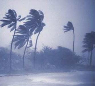 तेलंगाना में तीन दिन तक बारिश की संभावना 19