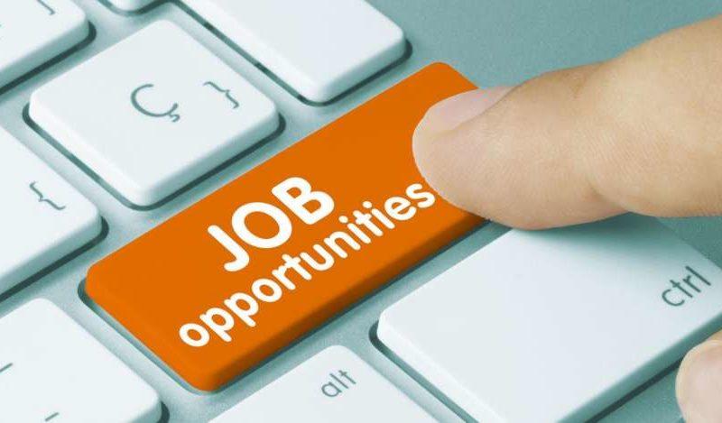 तेलंगाना स्थानीय लोगों को नौकरी की प्राथमिकता के लिए मसौदा नीति को मंजूरी दी 19