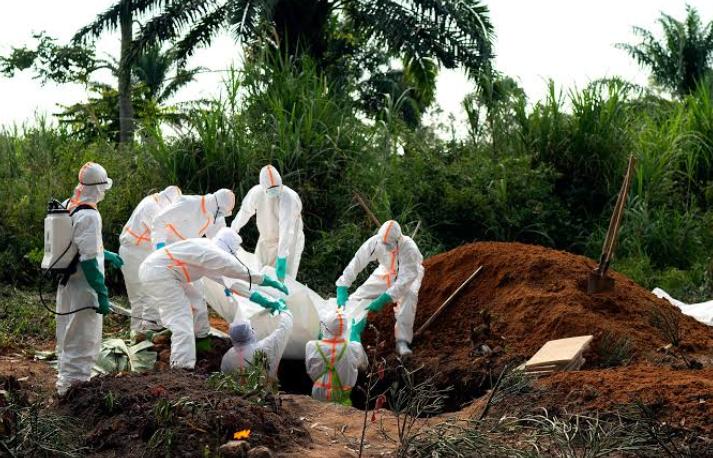 खतरनाक इबोला बुखार का सफल परीक्षण! 15
