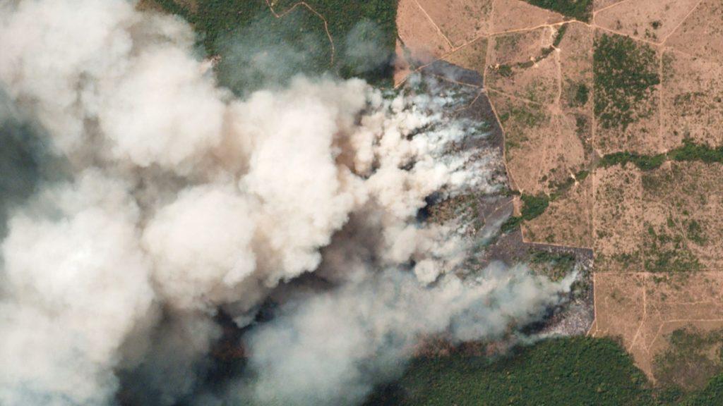 अमेज़न के घने जंगल : दो हफ्ते से जल रहा है पृथ्वी का फेफड़ा,  जो दुनिया को देती है 20% ऑक्सीज़न 1