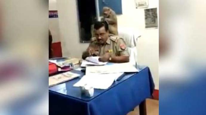 VIDEO: UP पुलिस के सर में जुएं खोजता बंदर का विडियो इंटेरनेट पर मचा रहा है धूम 10