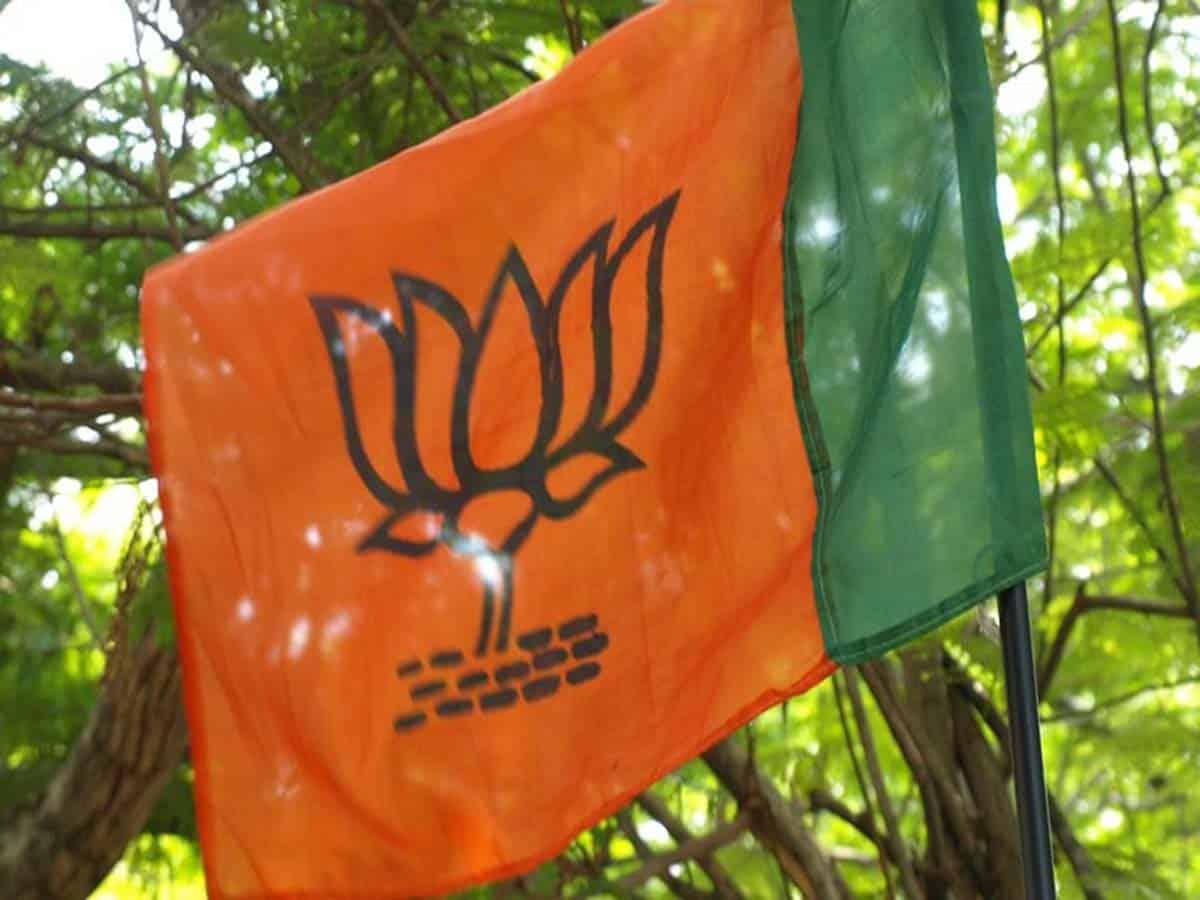 विष्णु दत्त शर्मा मध्य प्रदेश के नए भाजपा अध्यक्ष हैं 5