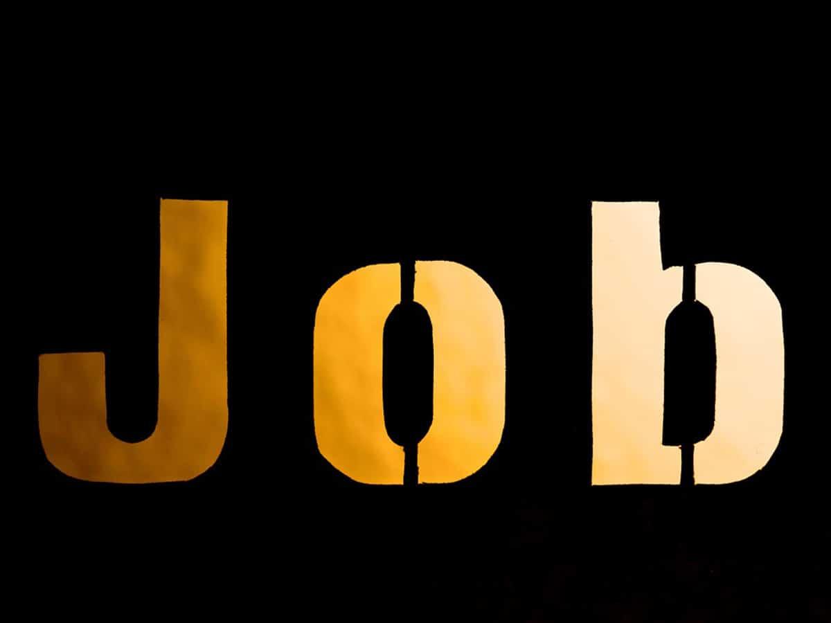 DSSSB Recruitment 2020- सरकारी नौकरी पाने का मौका, क्लर्क, असिस्टेंट समेत यहां कई पदों पर भर्ती