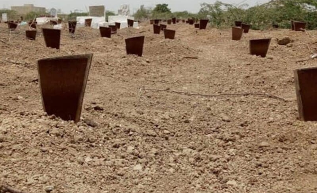 दिल्ली वक्फ़ बोर्ड का फैसला: कोरोना से मरने वालों को दफनाया जायेगा अलग कब्रिस्तान में! 14