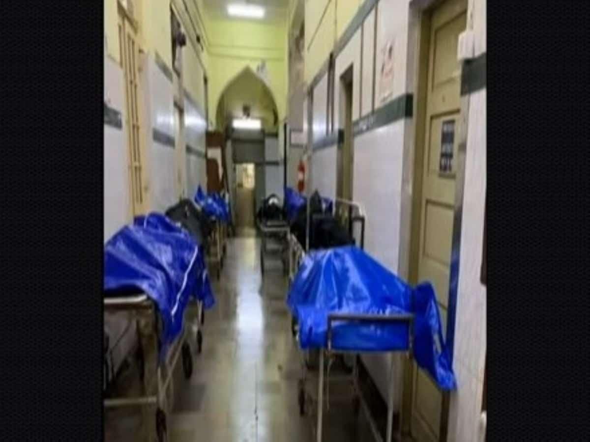 मुंबई के KEM अस्पताल में मरीजों के बीच हर तरफ रखे गए हैं डेड बॉडी, वायरल हो रहा विडियो 17