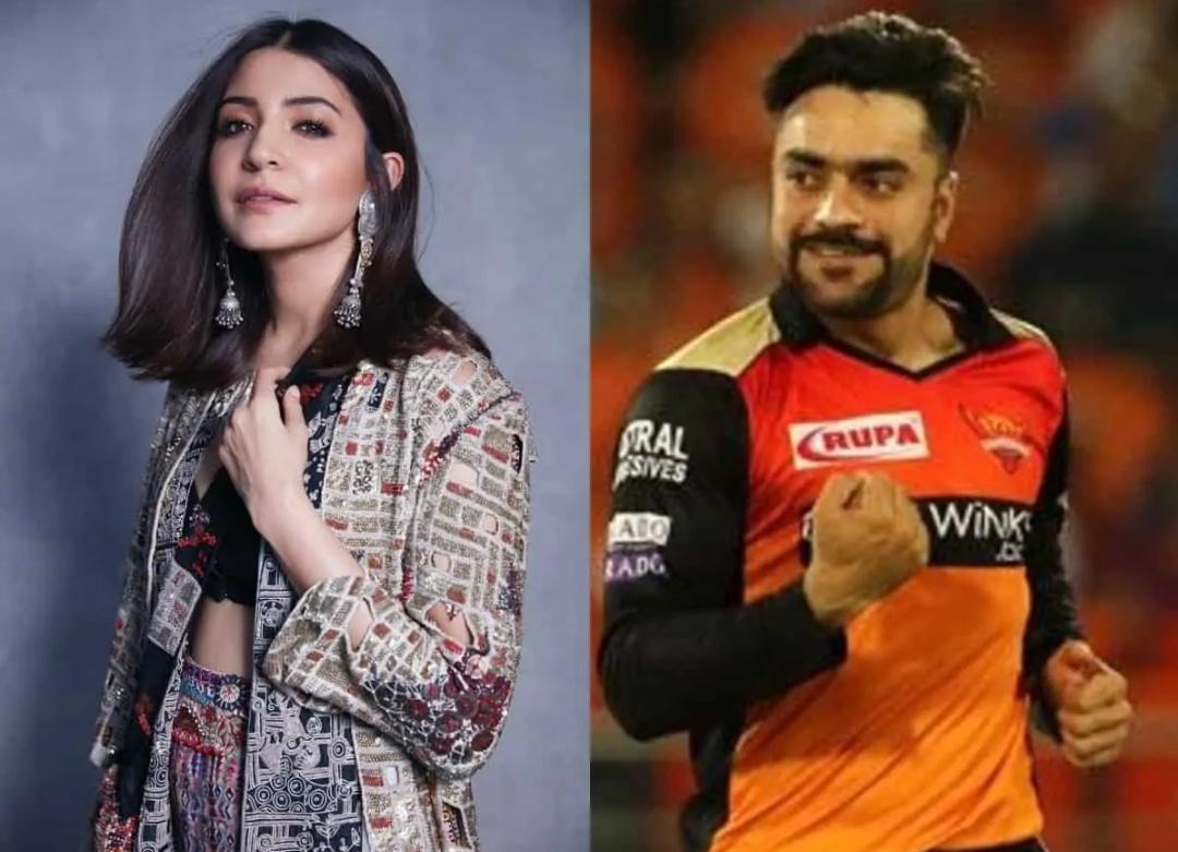 गुगल पर राशिद खान की पत्नी सर्च करने पर अभिनेत्री अनुष्का शर्मा बता रहा है! 17