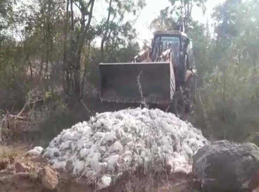 निज़ामाबाद के एक खेत में 2000 से अधिक चिकन मृत पाया गया! 10