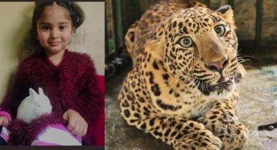 जम्मू-कश्मीर के बडगाम में आदमखोर तेंदुए को गोली मारने का आदेश