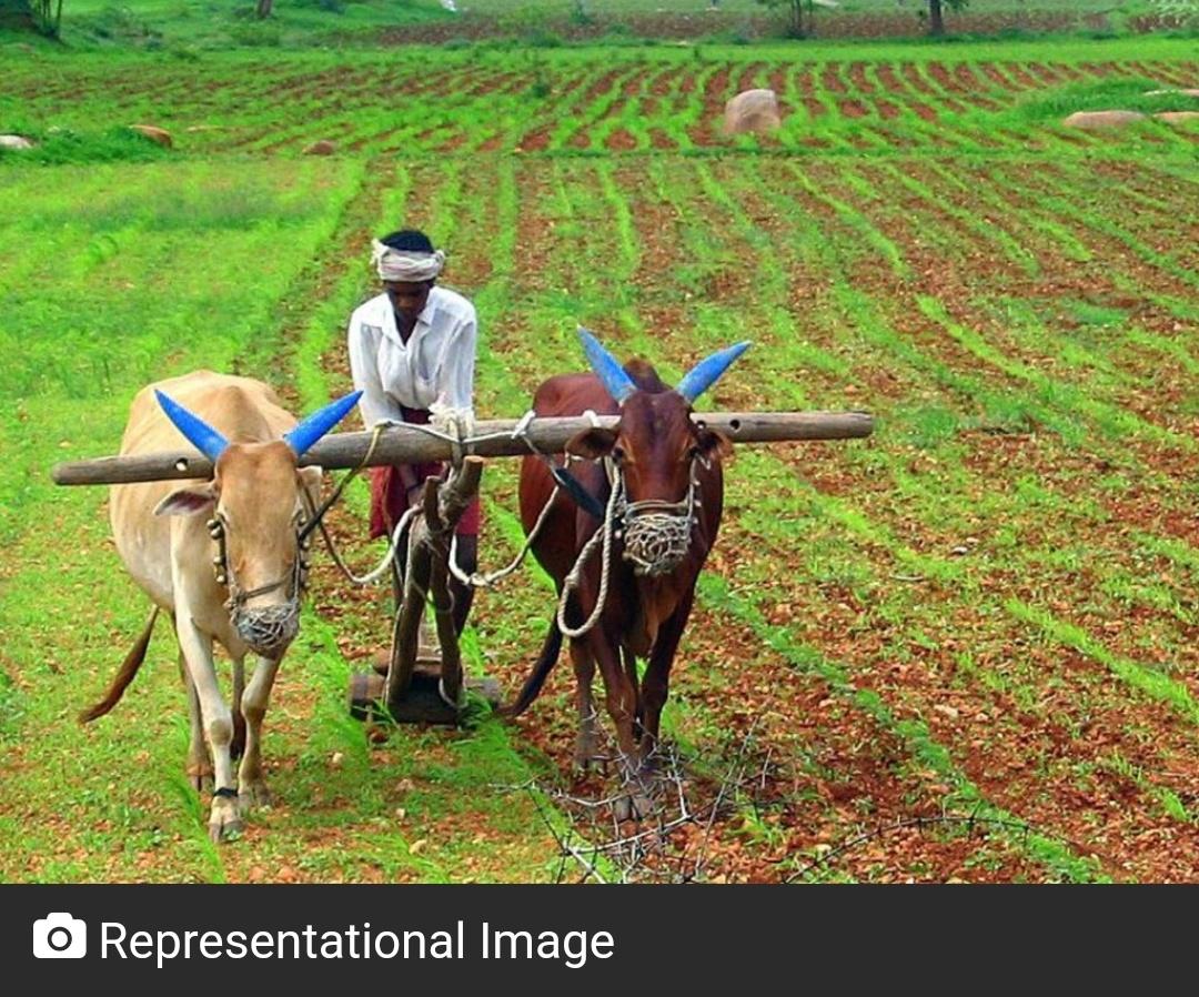 तेलंगाना के किसानों को 15 जून से 7,509 करोड़ रुपये की निवेश सहायता मिलेगी 2