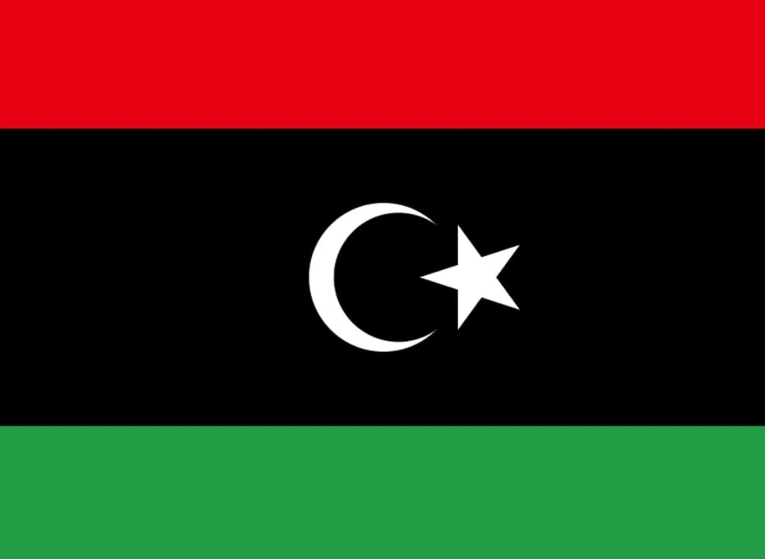 1,000 से अधिक अवैध प्रवासी लीबिया लौटे: यूएनएचसीआर 1
