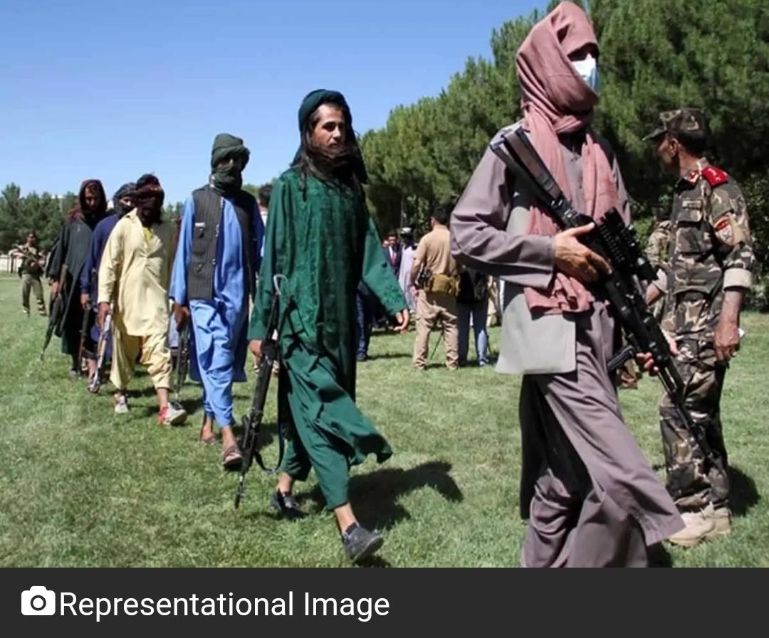 अफगानिस्तान के मलिस्तान जिले में तालिबान आतंकवादियों ने 43 को मारा! 6