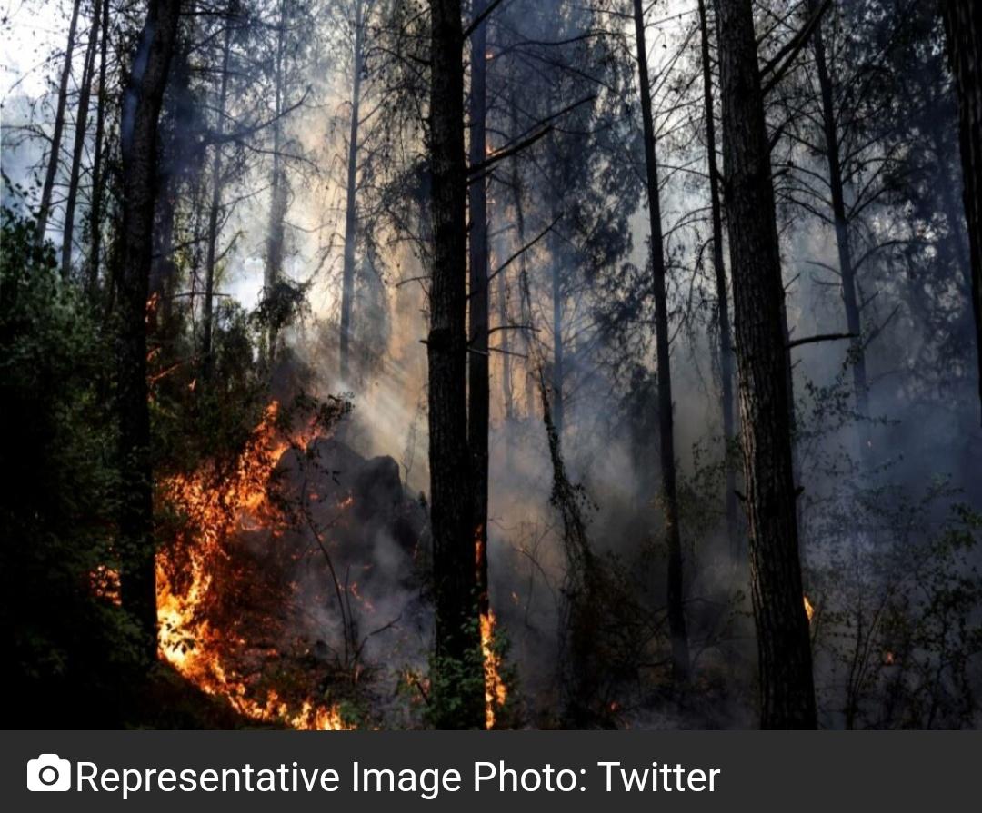 तुर्की में आग का कहर जारी! 9