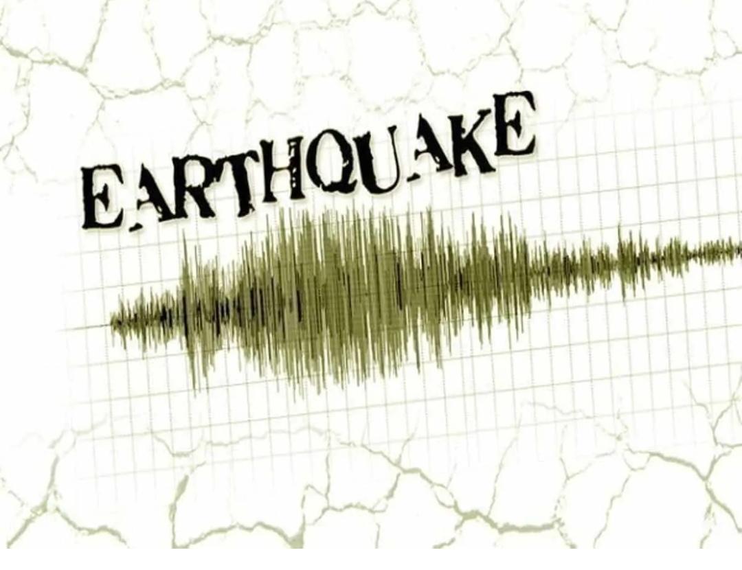 4.1 भूकंप ने गुजरात के कच्छ को झटका दिया! 9