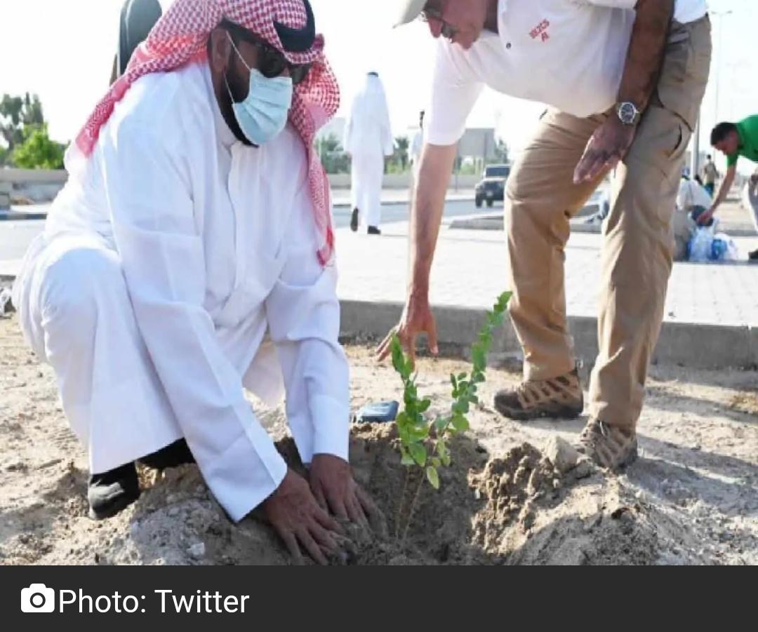 कुवैत ने जलवायु चुनौतियों से निपटने के लिए वृक्षारोपण अभियान शुरू किया 11